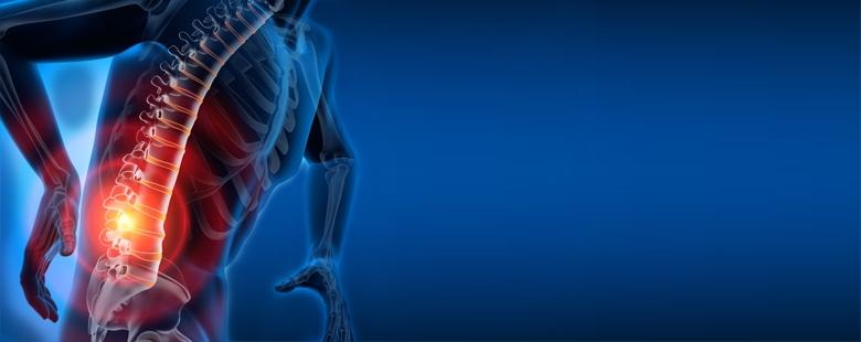 stawy-i-kości