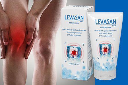 Levasan-Maxx-ból stawów