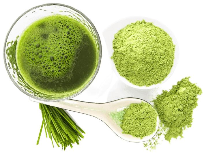 właściwości-odchudzające-zielonego-jęczmienia-green-barley-plus