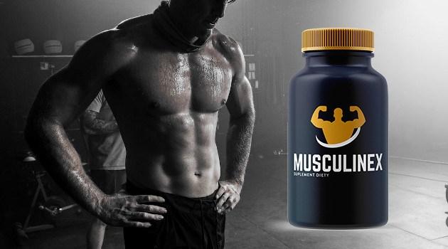 Musculinex-Efekty