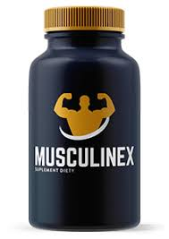 musculin