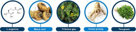 Jakie składniki składają się na formułę Moleculica?